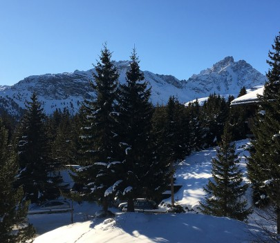 French Alps – Chalet